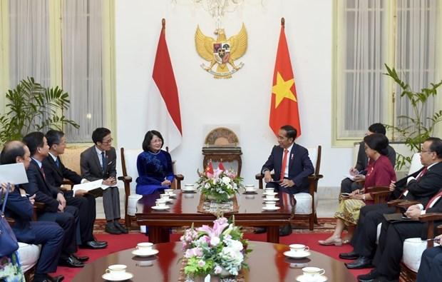 越南国家副主席邓氏玉盛会见印尼总统佐科·维多多 hinh anh 1