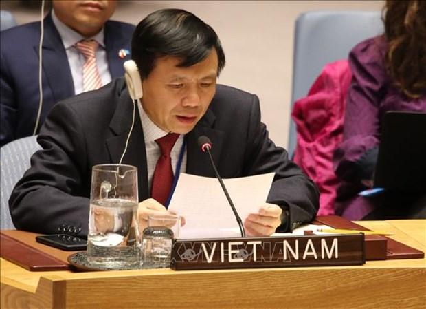 越南参与联合国大会第三委员会的人权保障和促进工作 hinh anh 1