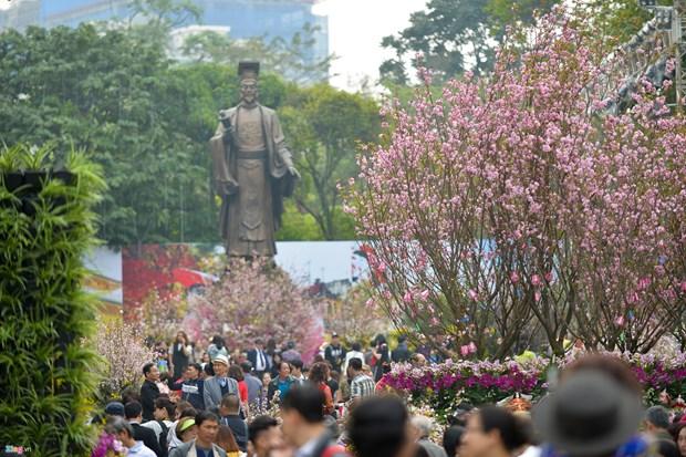 第五届河内日本樱花节将于2020年3月举行 hinh anh 1