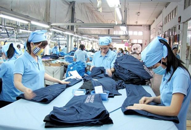 出口活动依然是越南经济的发展动力 hinh anh 1
