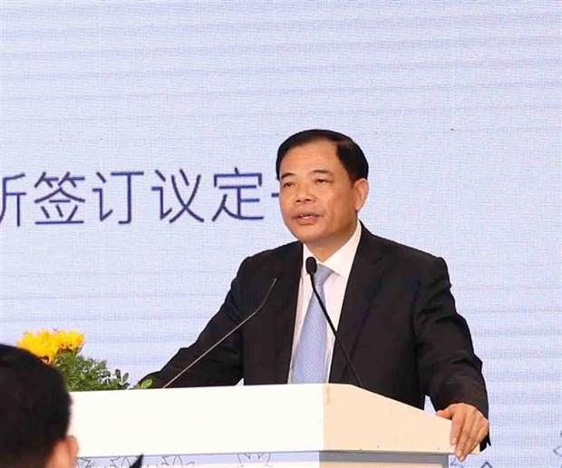 越南首批乳制品正式进军中国市场 hinh anh 2