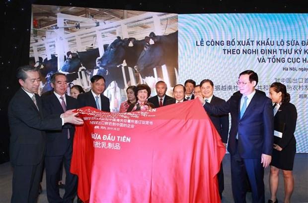 越南首批乳制品正式进军中国市场 hinh anh 1
