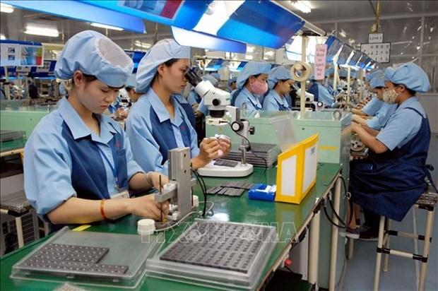 2019年越南工业白皮书出炉 hinh anh 2