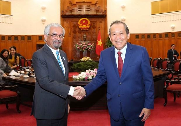 张和平副总理:联合国是越南对外政策的优先之一 hinh anh 1