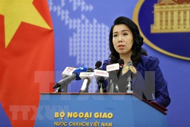 越南要求有关各方尊重越南主权 hinh anh 1