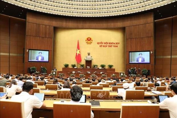 越南第十四届国会第八次会议公报(第五号) hinh anh 1