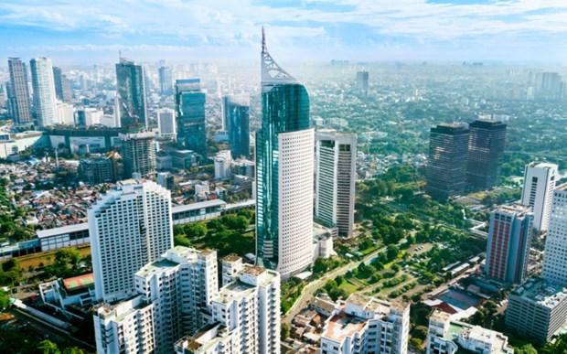 印尼提出2020年11月达成RCEP的目标 hinh anh 1