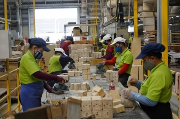 越南前10月农林水产品出口额达330亿多美元 hinh anh 2