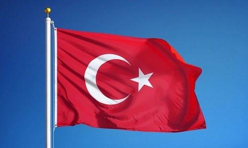 越南领导人向土耳其领导人致国庆贺电 hinh anh 1