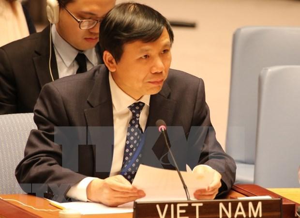 越南在联合国安理会关于妇女、和平与安全公开辩论会上积极建言献策 hinh anh 1