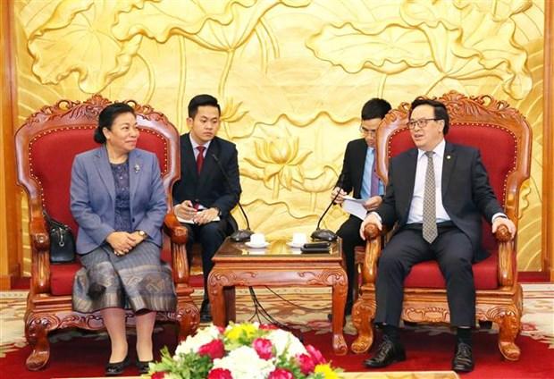 越共中央对外部部长黄平君会见老挝革命人民党中央对外部代表团 hinh anh 1