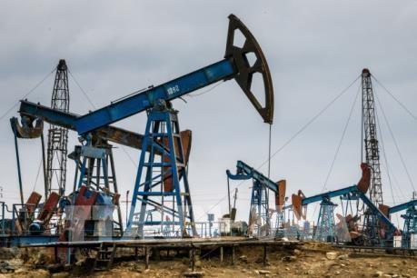 国际能源机构:未来几年东南亚将实现化石燃料净进口 hinh anh 1