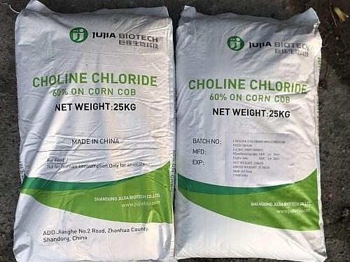 印度对氯化胆碱发起反倾销调查 hinh anh 1