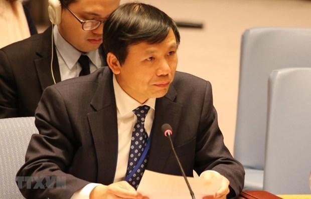 越南大力支持国际法律进程 hinh anh 1
