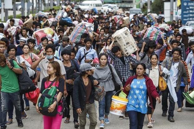 柬老缅携手保护移民劳工的权益 hinh anh 1