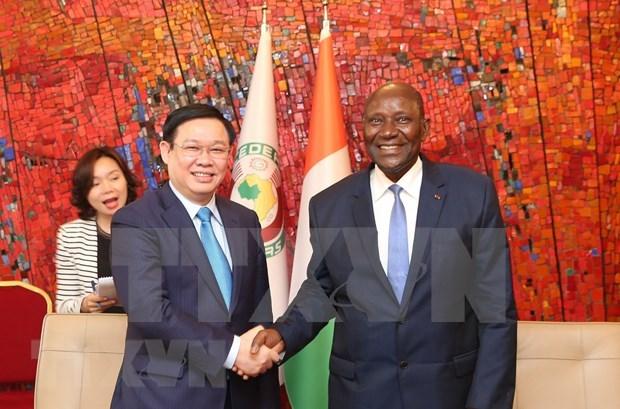 加强越南与科特迪瓦的合作关系 hinh anh 1