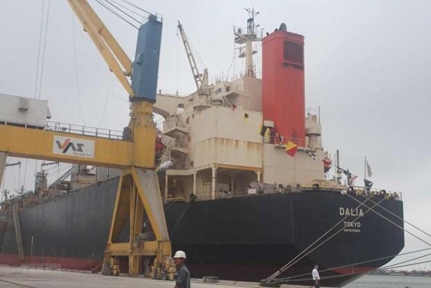 海运在越南海洋经济发展战略起着重要作用 hinh anh 1