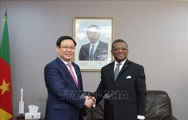 越南政府副总理王廷惠访问喀麦隆 hinh anh 1