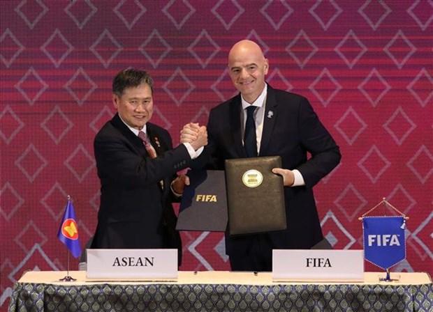 东盟与国际足联合作促进东南亚足球发展 hinh anh 1