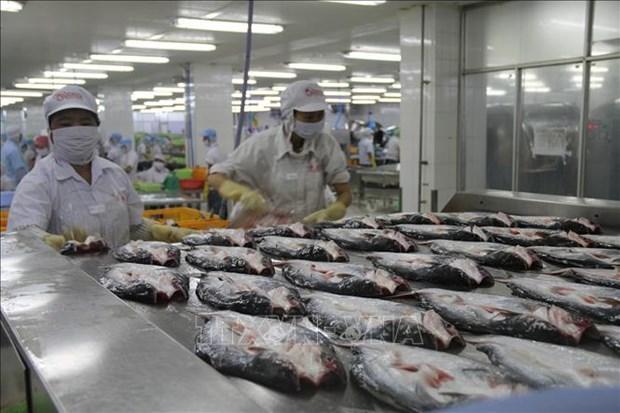 美国承认越南无鳞鱼类产品食品安全检验体系等效性 hinh anh 1