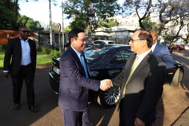 越南政府副总理王廷惠对南非进行工作访问 hinh anh 1