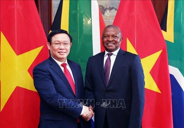 越南政府副总理王廷惠与南非副总统戴维会谈 hinh anh 1