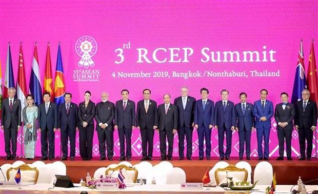第35届东盟峰会:谈判国正式将RCEP签署时间推迟至明年 hinh anh 1