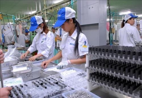70%的中国香港企业拟东盟开厂 首选越南 hinh anh 1