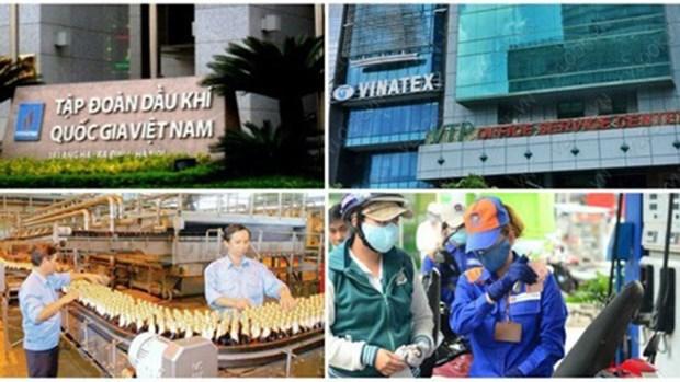 实施股份制改革之后国有企业稳定增长 hinh anh 1
