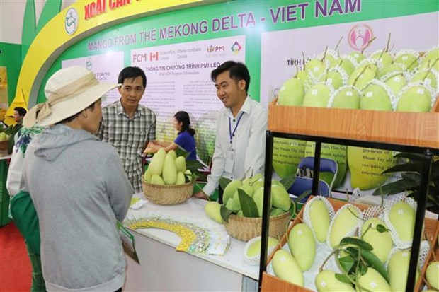 2019年越南国际农业展会开展 hinh anh 2
