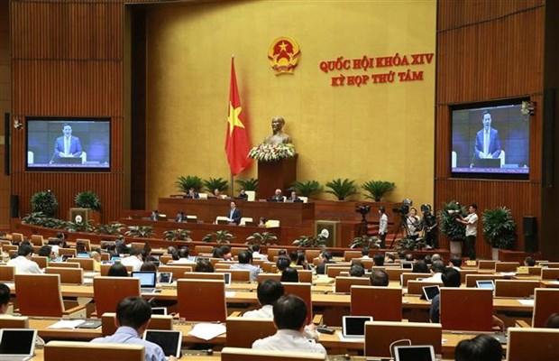 越南第十四届国会第八次会议:健全法制打击网络虚假新闻 hinh anh 2
