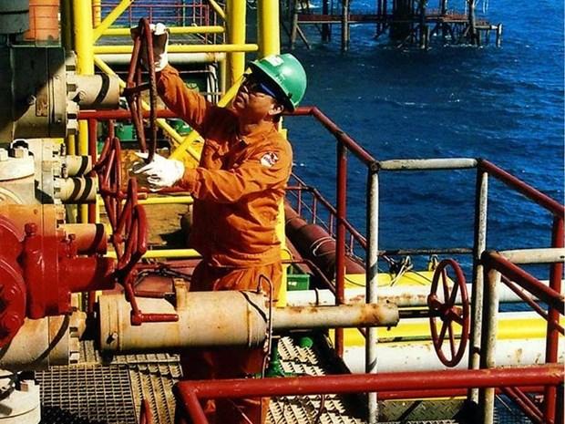 越南油气集团提前2个月完成全年目标 hinh anh 2