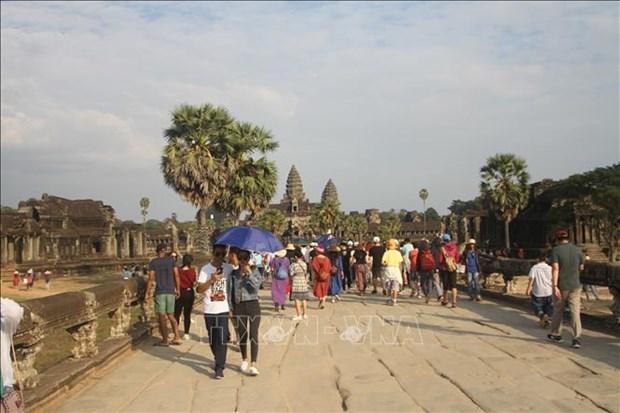 赴柬外国游客人数呈现猛增态势 hinh anh 2
