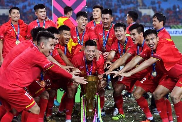 东南亚足球奖:越南男足荣膺年度最佳球队 hinh anh 1