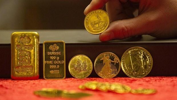 11月11日越南国内黄金价格略增 hinh anh 1
