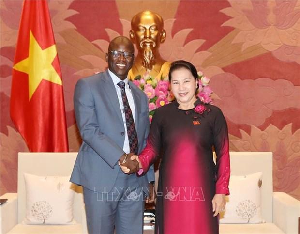 越南国会主席阮氏金银会见世行驻越首席代表奥斯曼•迪奥 hinh anh 1