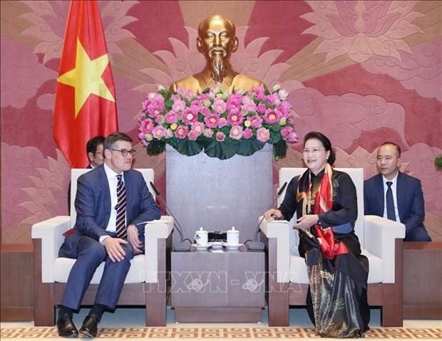 越南国会主席阮氏金银会见德国黑森州议会议长莱茵 hinh anh 1