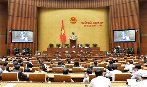 越南第十四届国会第八次会议公报(第十七号) hinh anh 1