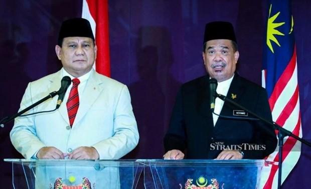 马来西亚与印尼加强防务合作 hinh anh 1