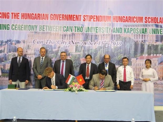 越南芹苴市与匈牙利促进教育领域中的合作 hinh anh 1