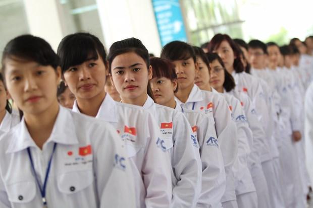 在日越南劳工人数位居第一 hinh anh 1