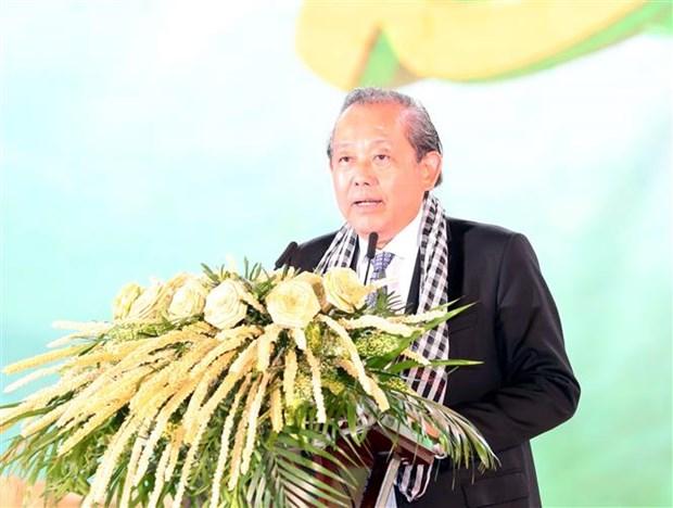 2019年第五届槟椥椰子节:椰子树迈上融入与可持续发展之路 hinh anh 2