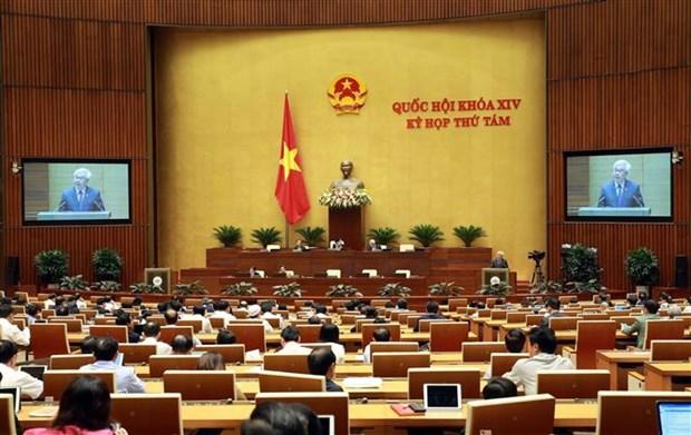 越南第十四届国会第八次会议:分组讨论两部法案 表决通过一项决议 hinh anh 1