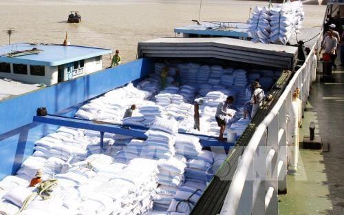安江省大米和水果出口美国市场前景广阔 hinh anh 1