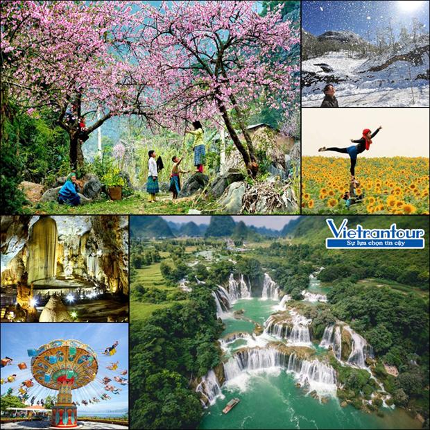 越南春节旅游市场步入旺季 hinh anh 1