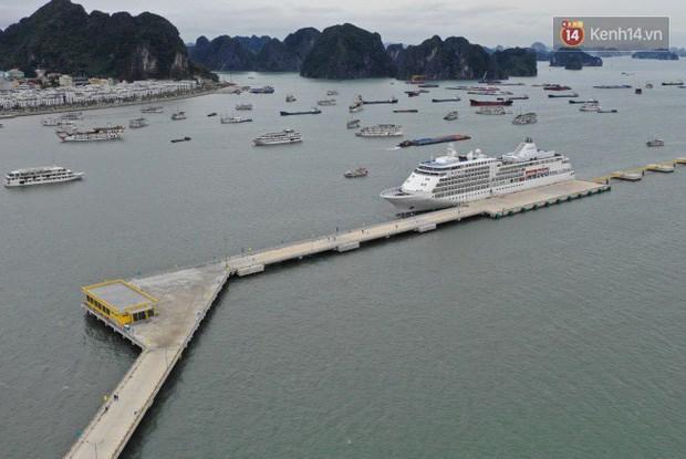 下龙——国际游客向往的旅游目的地 hinh anh 1