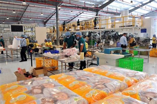 越南首家生产厂在古巴落成 hinh anh 2