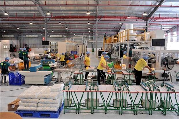 越南首家生产厂在古巴落成 hinh anh 1