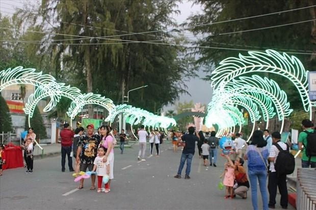 第五届槟椥椰子节吸引20万人次参加 hinh anh 2
