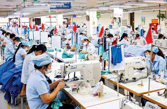 30年来流入越南纺织服装业的外资达近193亿美元 hinh anh 1
